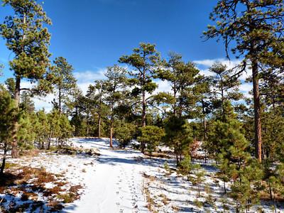 Black Forest Regional Park